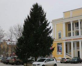 В Брянске установили главную новогоднюю ёлку Фокинского района