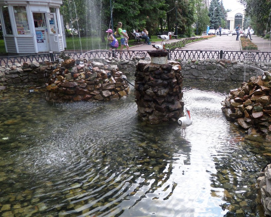 Брянская общественность выступила против вырубки Круглого сквера