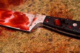Юные брянцы убили мужчину за 50 рублей и получили 26,5 лет тюрьмы