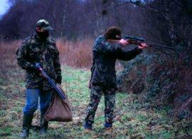 Брянские браконьеры настреляли дичи на полмиллиона рублей