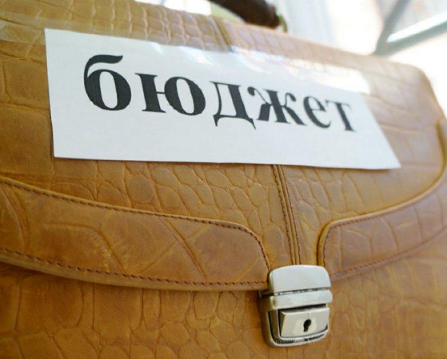 Народные избранники облдумы впервом чтении приняли бюджет Брянской области на 2016г...