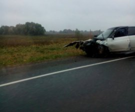 На брянской трассе невнимательный водитель протаранил иномарку