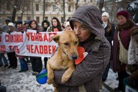 Контракт на убийство бродячих собак в Брянске признали незаконным
