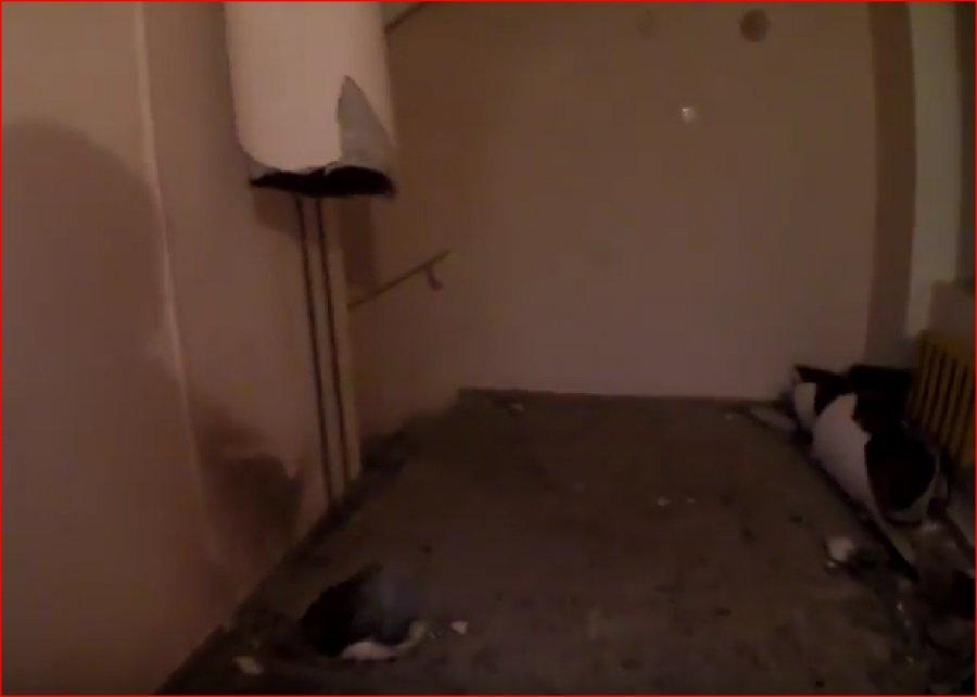 В сети появилось видео взрыва мусоропровода в брянской многоэтажке