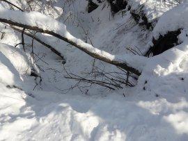 В Брянске 5-летняя девочка упала в глубокий ров возле Дворца Гагарина