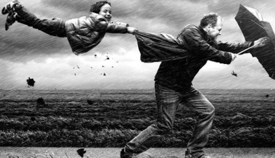 ВБрянской области штормовое предупреждение из-за сильного ветра— МЧС