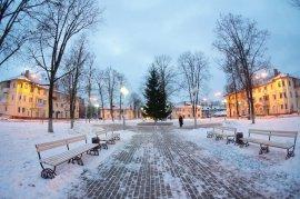 В Брянске на Володарке установили новогоднюю елку