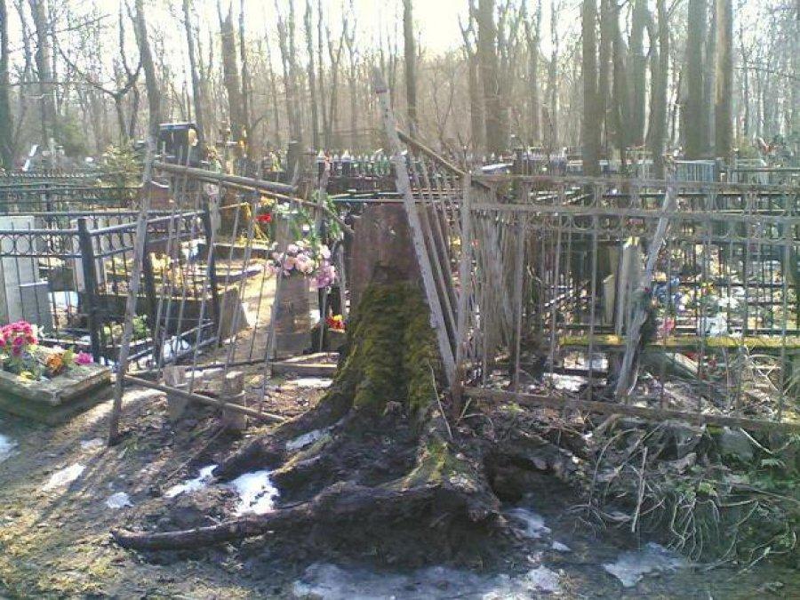 ВПочепском районе 17 сельских кладбищ оказались бесхозными