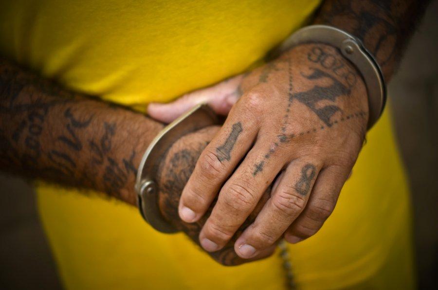 Брянец, находящийся в федеральном розыске, задержан в Подмосковье