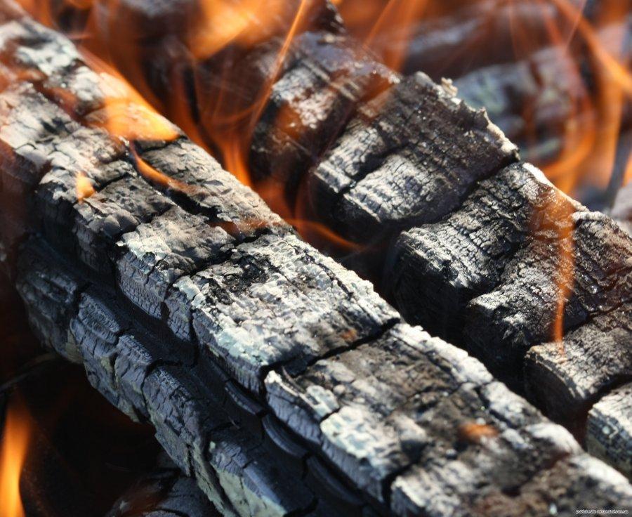 В Брянске женщина с двумя детьми из-за пожара лишилась дома