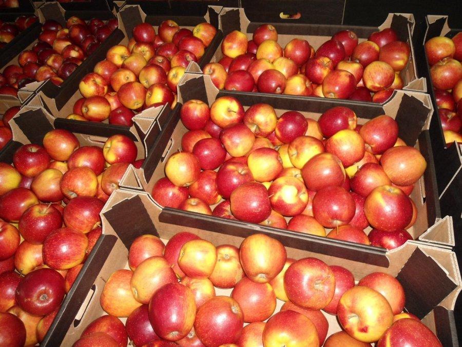 Россельхознадзор желает проинспектировать места хранения яблок урожая следующего года вРеспублике Беларусь
