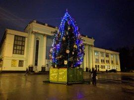 В Брянске установили главную новогоднюю ёлку Бежицкого района