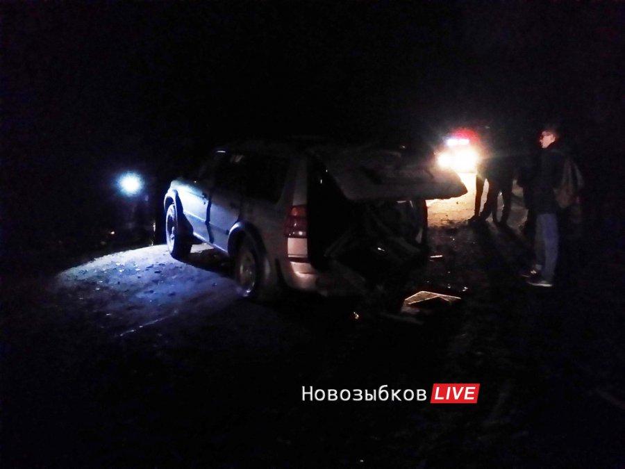 Женщина погибла вДТП с нетрезвым водителем вБрянской области