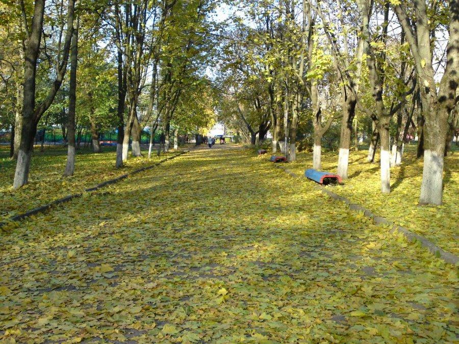 Вбрянском парке Железнодорожников установят чудные фигуры