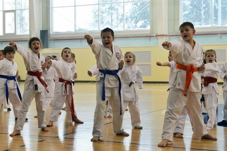 Брянские спортшколы «Рекорд» и«Олимп» ожидает оптимизация