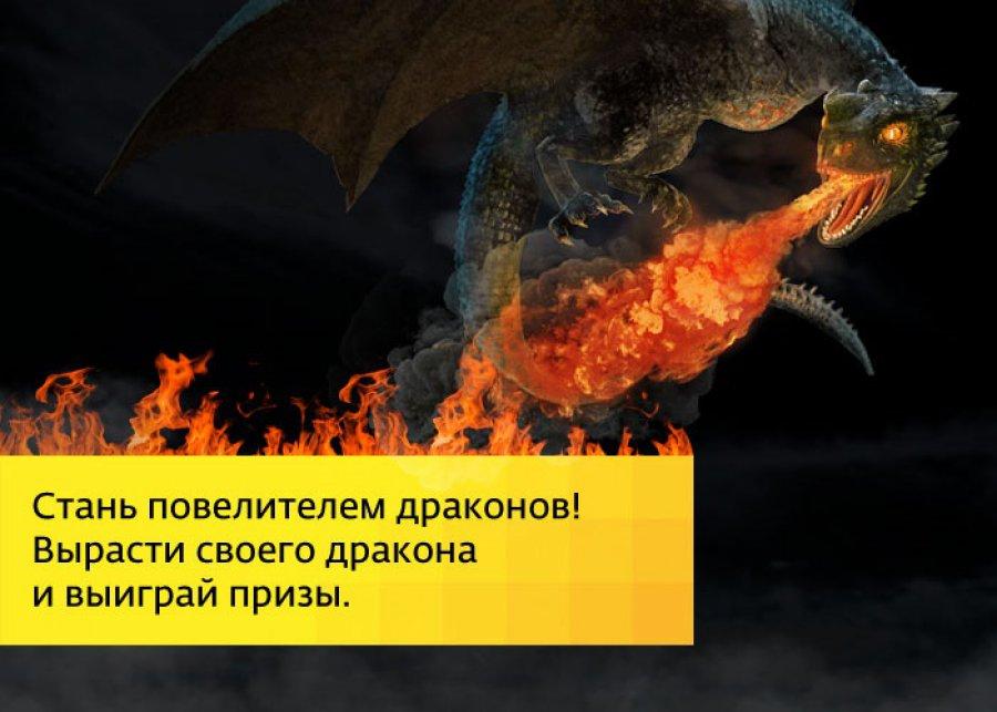 скачать игру вырасти дракона - фото 5