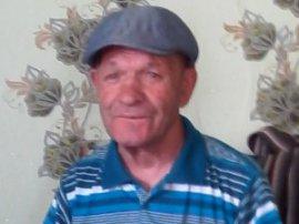 В Брянской области пропал 69-летний грибник