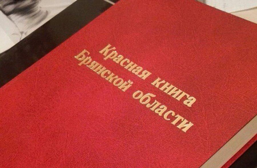 Квыходу всвет готовится 2-ое печатное издание Красной книги Брянщины