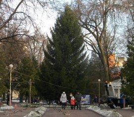 Замена главной елки Брянска напоминала спецоперацию