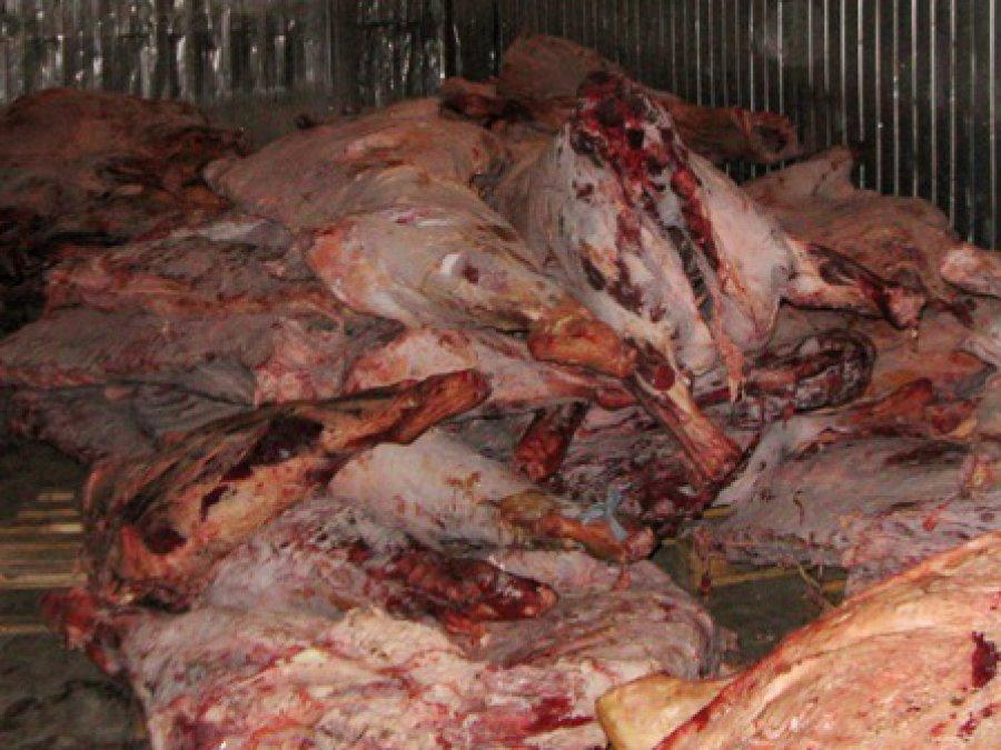 В Брянск не пустили 6 тонн мяса