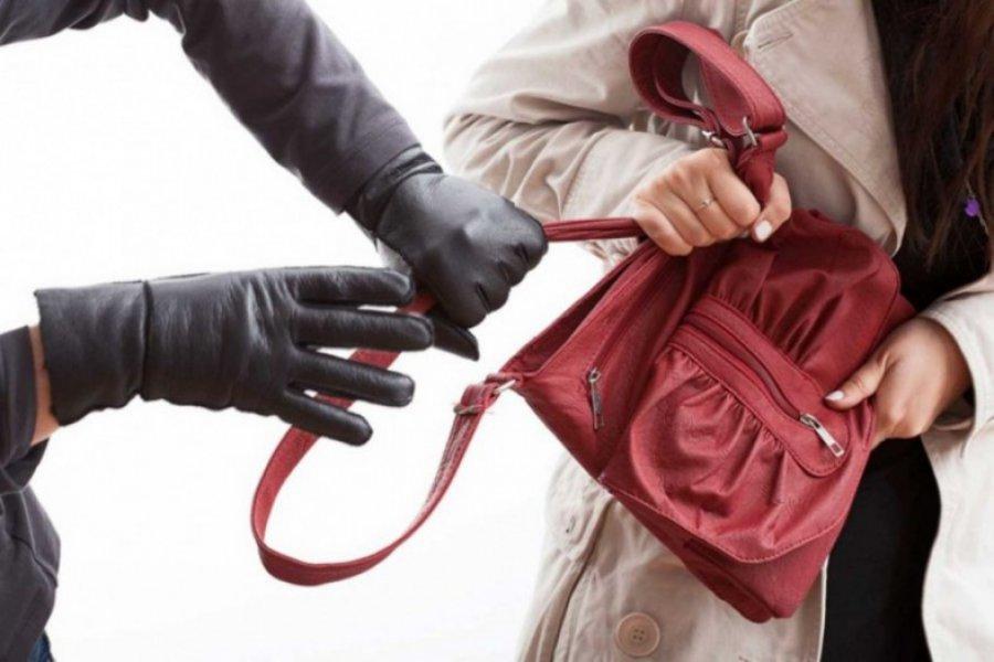 ВБрянске бесстрашная девушка справилась сграбителем