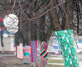 В Брянске к Новому году деревья украсили в цвета радуги