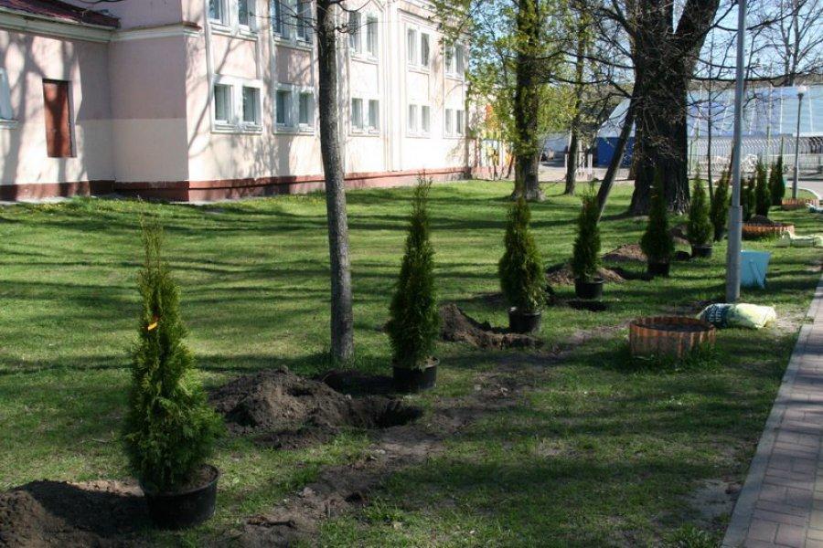 25 апреля в каждом районе Брянска появятся новые скверы