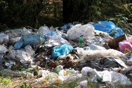 Чиновники 8 брянских деревень забыли про вывоз мусора