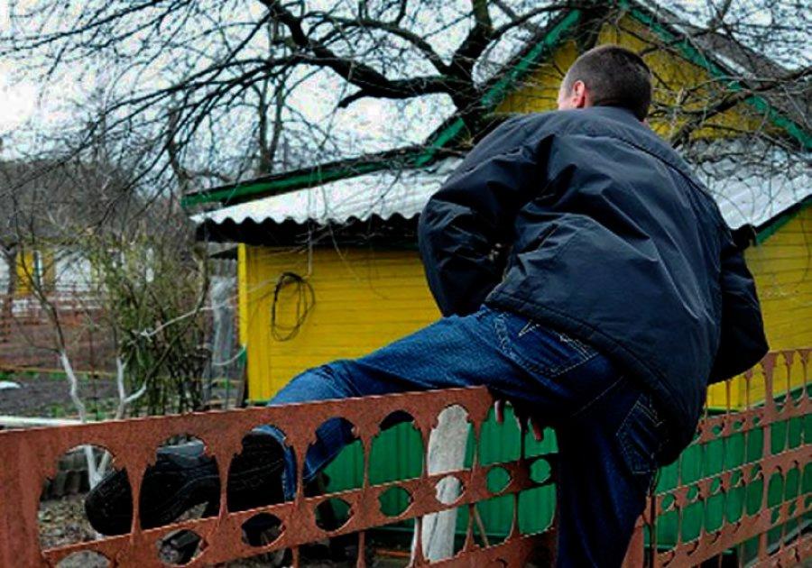 ВБрянске милиция задержала 27-летнего дачного вора