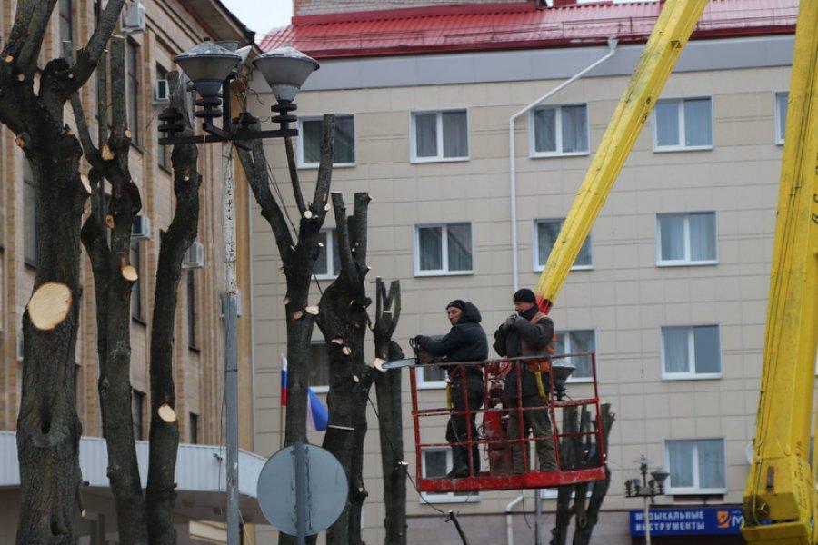 Неменее 300 деревьев, угрожавших безопасности городских жителей, вырубили вБрянске