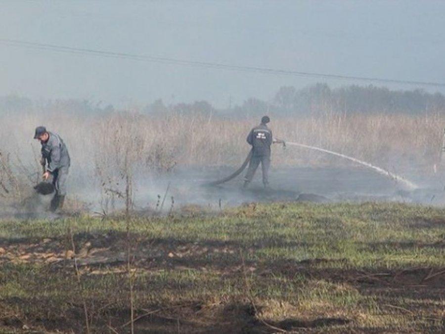 Наюго-западе Брянщины появился 1-ый серьезный пожар этого лета