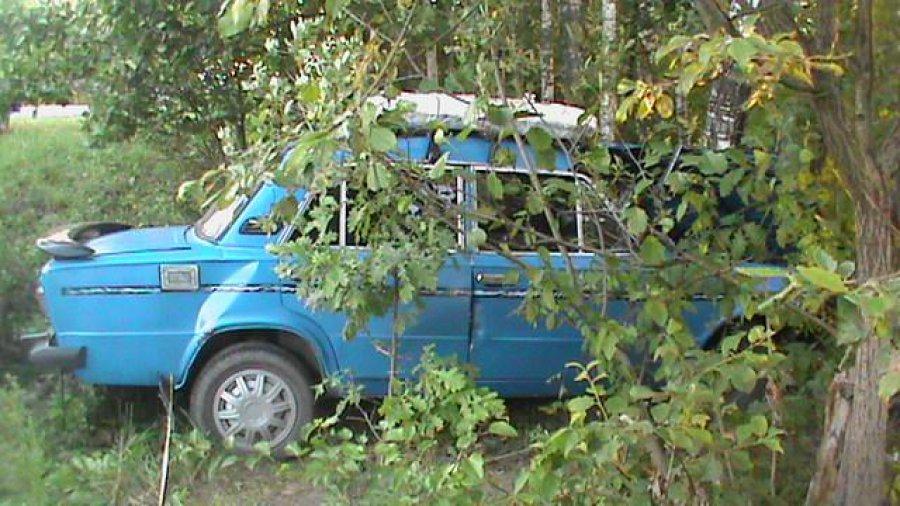 """В Дубровском районе водитель """"шестёрки"""" врезался в дерево и сломал нос"""