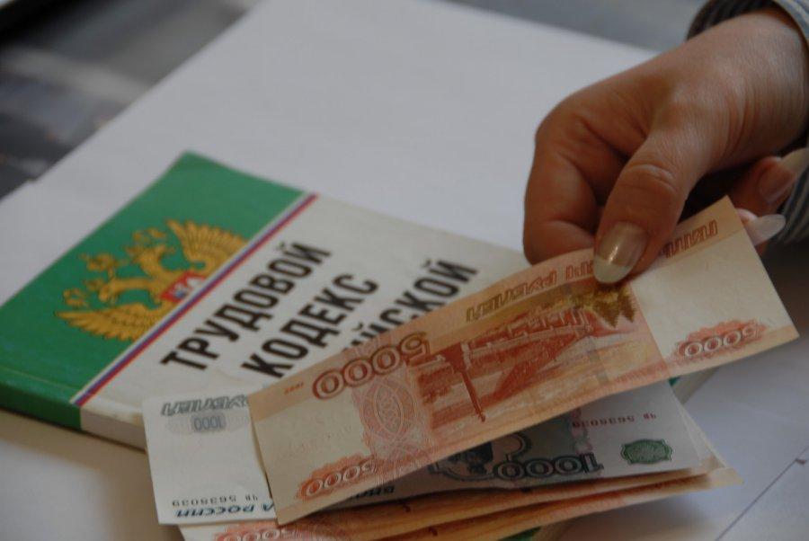 Задолженность по заработной плате вБрянской области составляет 32 млн. руб. - генпрокуратура