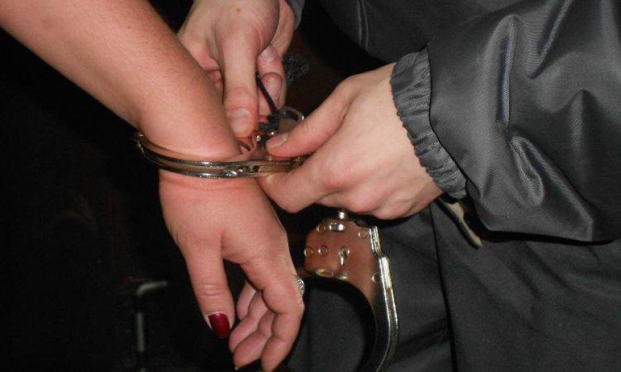 ВБрянске мать осужденного впопытке посодействовать сыну сама угодила вколонию
