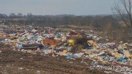 В Стародубском районе экологи нашли стихийные свалки