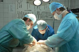 В Брянске врачи спасают продавщицу, раненую ножом в супермаркете