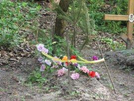 В брянском селе организовали стихийное кладбище