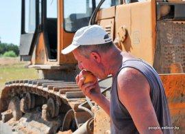 Брянские власти рапортуют о победе над санкционной продукцией