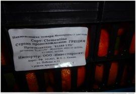 В Брянскую область не пустили 11 тонн зараженных мандаринов