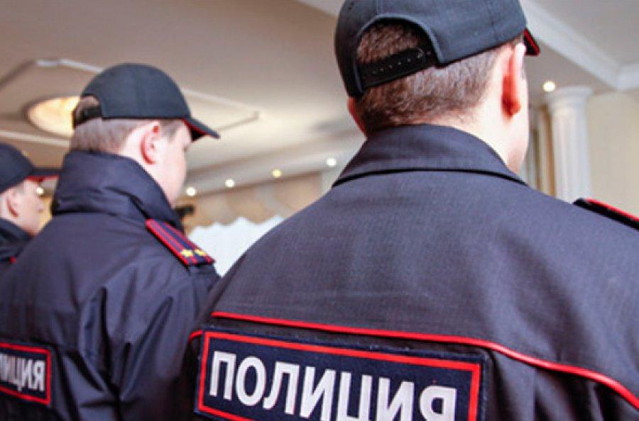 Натрассе «Брянск-Новозыбков» полицейская иностранная машина насмерть сбила женщину