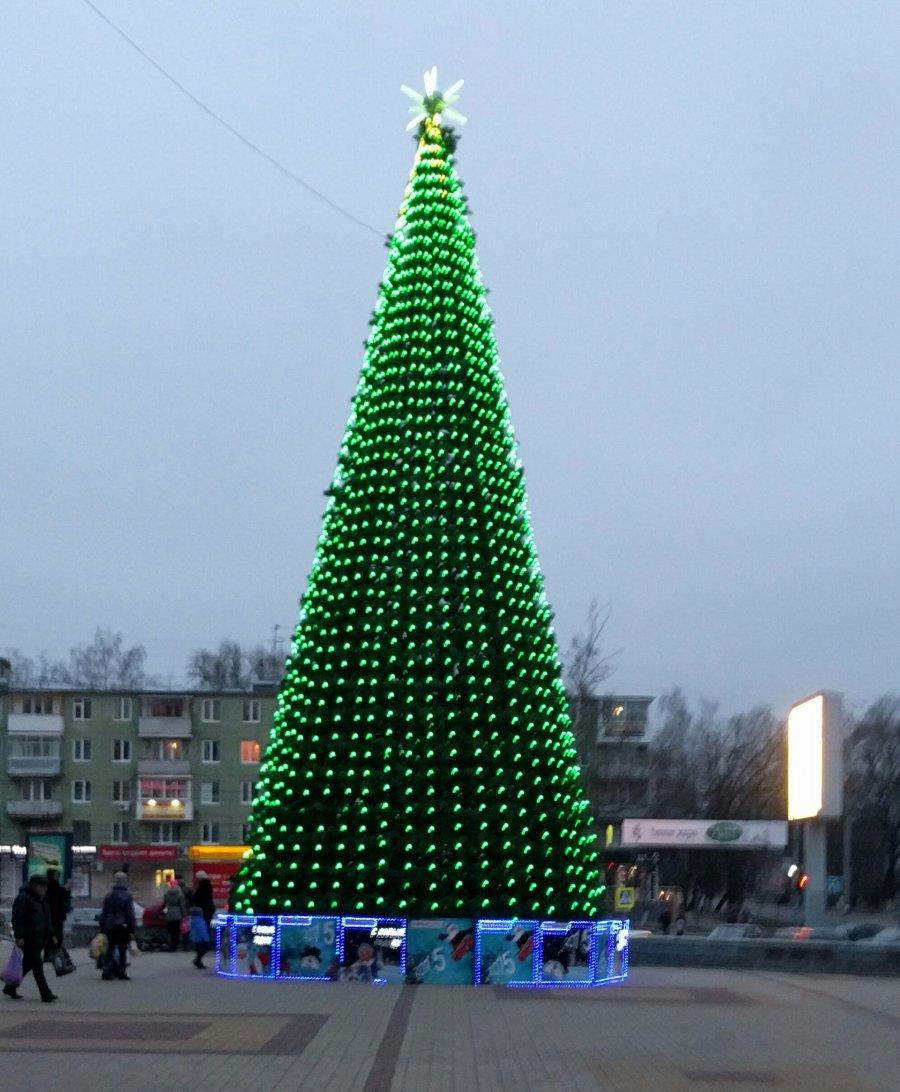 Первая новогодняя ёлка в Брянске