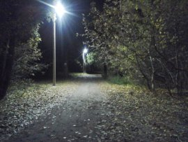В Брянске на дороге к центральному бежицкому пляжу появилось освещение
