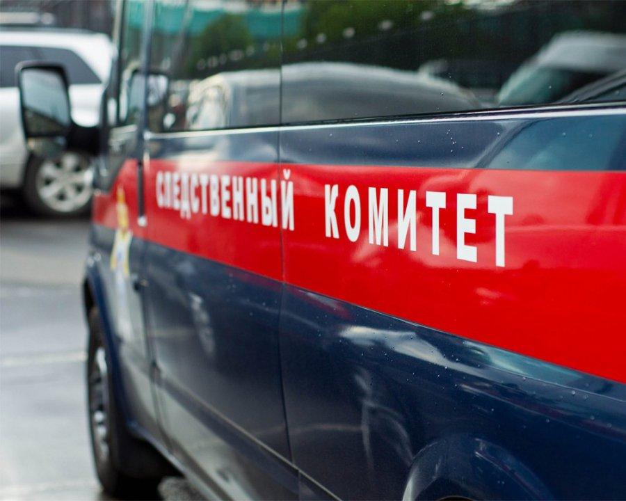 Вкомаричском Пигарёво впламени погибли две женщины идвое детей