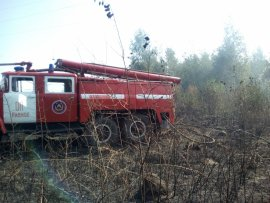 В Брянской области потушили горящий торфяник