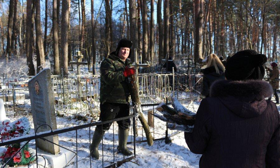 На основном кладбище Брянска кронировали неменее 80-ти деревьев