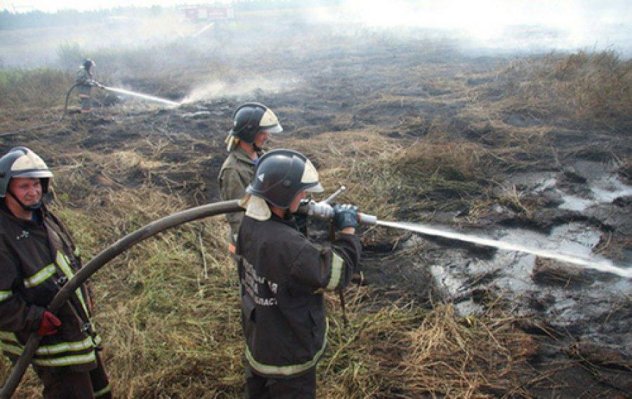 ВБрянской области работники МЧС локализовали торфяной пожар