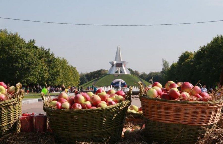 """На фестивале """"Яблочный спас"""" торговали подозрительным медом"""