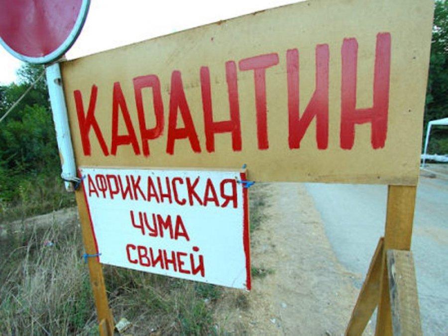 Новости Астрахани сегодня   Последние криминальные ...