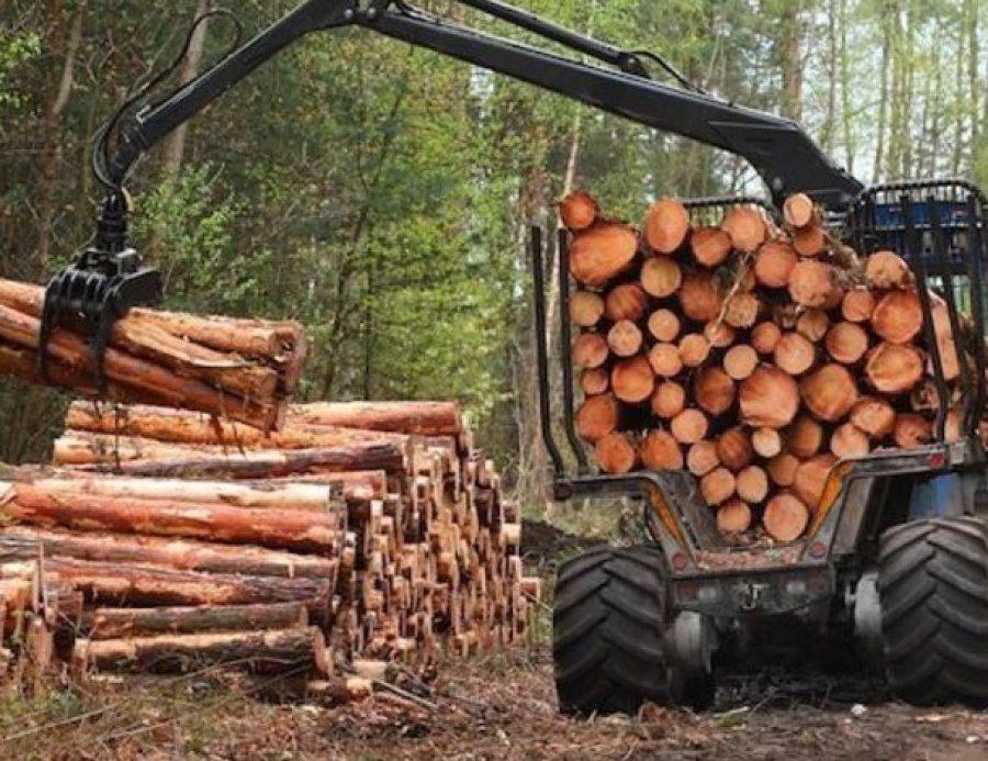 Брянская область увеличила доходы отсдачи леса варенду