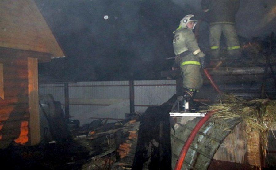 Ночью в Брянске сгорели дачный домик и сарай
